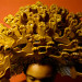 """Posing Beauty"", Deborah Willis, African American Art, KOLUMN Magazine, Kolumn"
