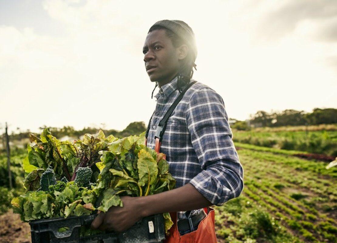 African American Farmers, Black Farmers, KOLUMN Magazine, KOLUMN, KINDR'D Magazine, KINDR'D, Willoughby Avenue, WRIIT, TRYB,